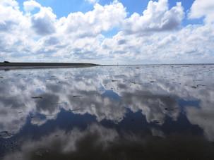 wadden sea - between water and sky