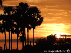 sunset_cambodia_village_palm