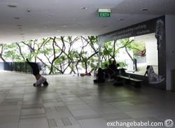 singapore_dancing_tree