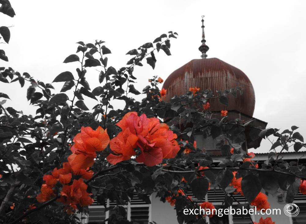 flower_mosque_sumatra_indonesia