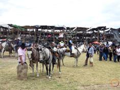 ecuadorean corrida