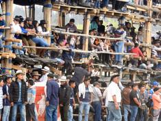many spectators