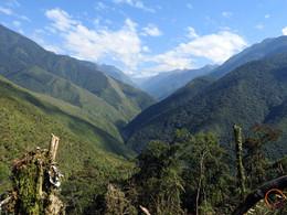 bolivian yungas