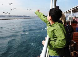 Istanbul_feeding seagulls