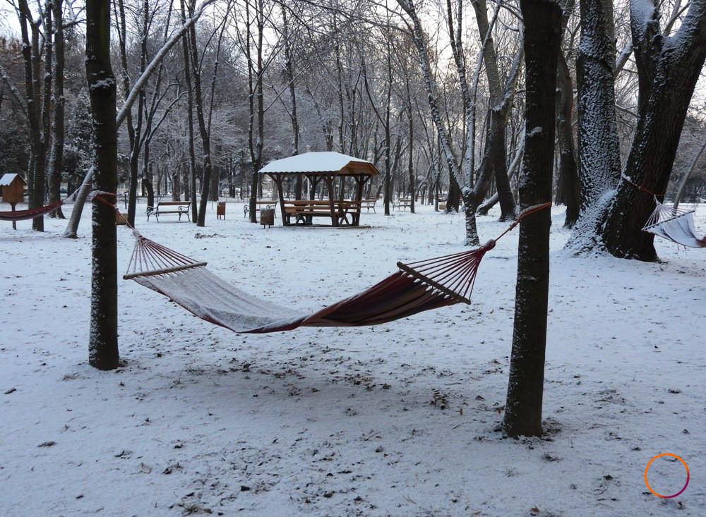 timisoara_winter