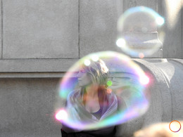 we all live in a bubble