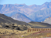 beauty of the andes
