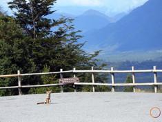 osorno - fox and view