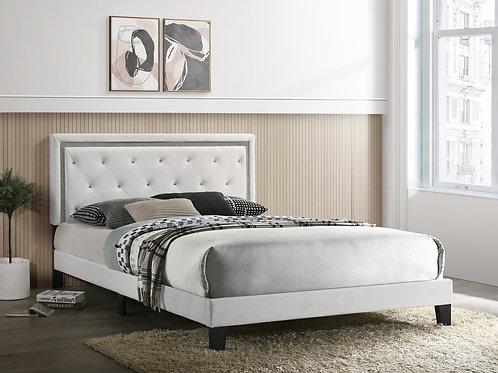 Passion Velvet  Platform Bed