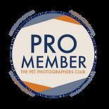 pro-member-badge-downlaod.png