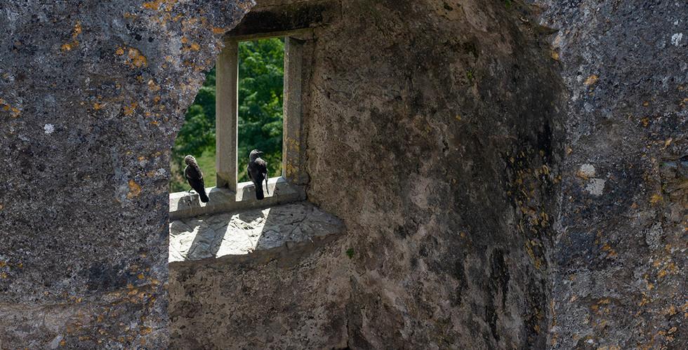 Window in Blarney Castle, July 2018