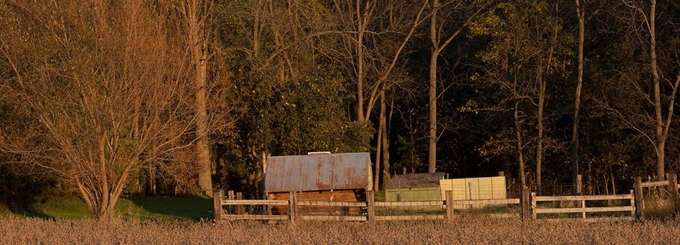 Western Hearts Ranch, Brimfield, Illinois, 2017
