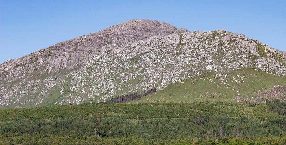 Landscape, July 2018