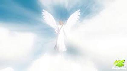 Angel pic.jpg