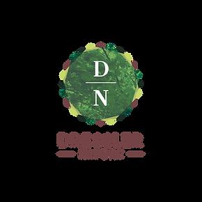 DN Logo.png