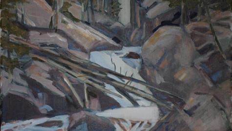 Colorado Mountian Stream