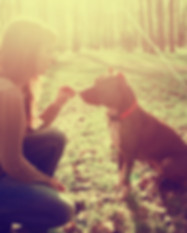 Woman with dog in park walking and playi