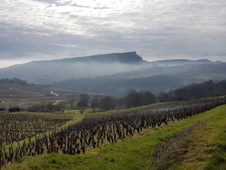 Bourgogne voor wijnliefhebbers