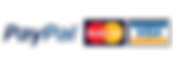 paypal_logo_3.png