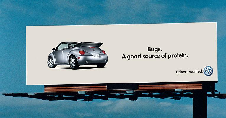 4.Bugs.protein.jpg