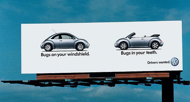4.bugs.jpg