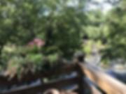 delacy_cabin_12.HEIC