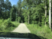 delacy_cabin_1.HEIC