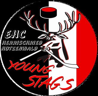 EHC Herrischried sucht neue Jugendleitung für die Young Stags.