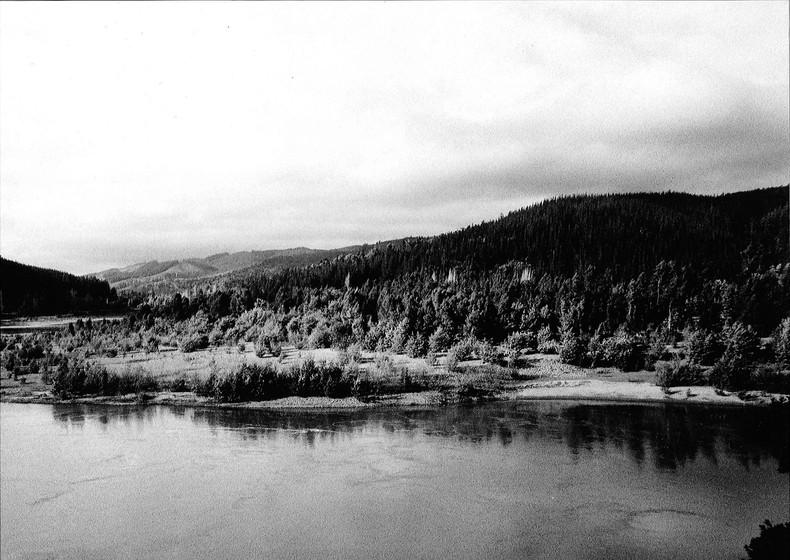 Maule River / Canon AE-1 / BW 200