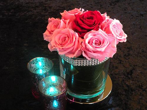 Roses éclatantes