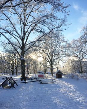 Vinterns vackra skrud, lek och utforskning i härligt vinterväder.