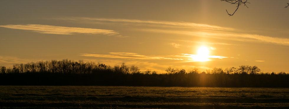 a sunny winter day.jpg