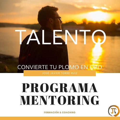 Talento - Programa mentoring