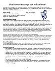 Blue Diamond Orientation Handbook_Page_0