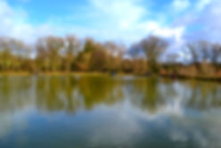 Bobs Lake.JPG