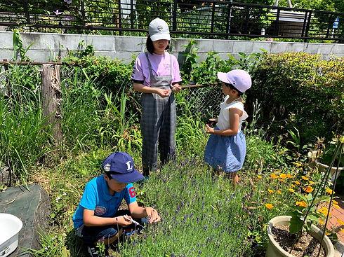 2020.6 岡谷にて草原で.jpg