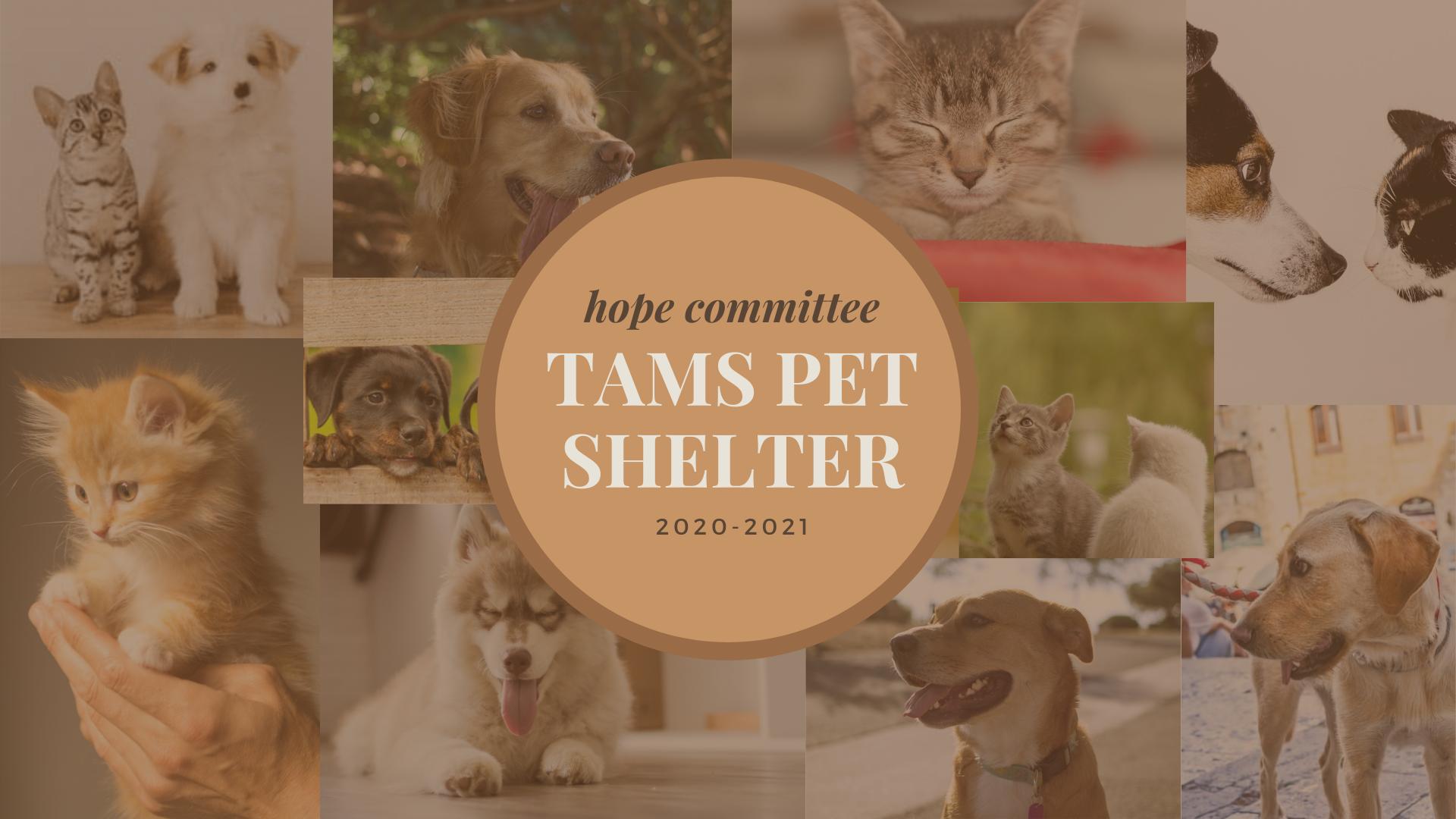 pet shelter.