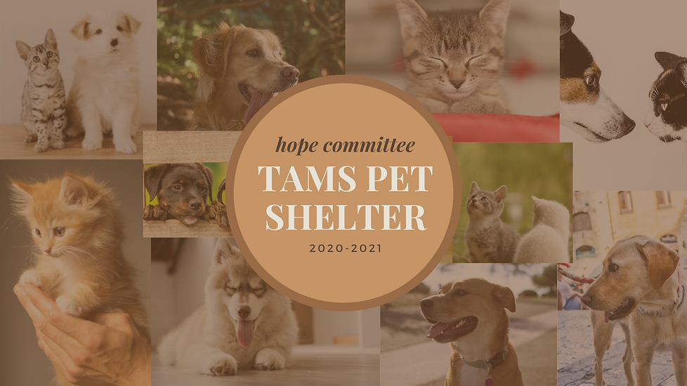 TAMS Animal Shelter.png
