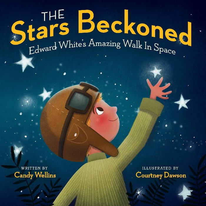 Cover image for The Stars Beckoned