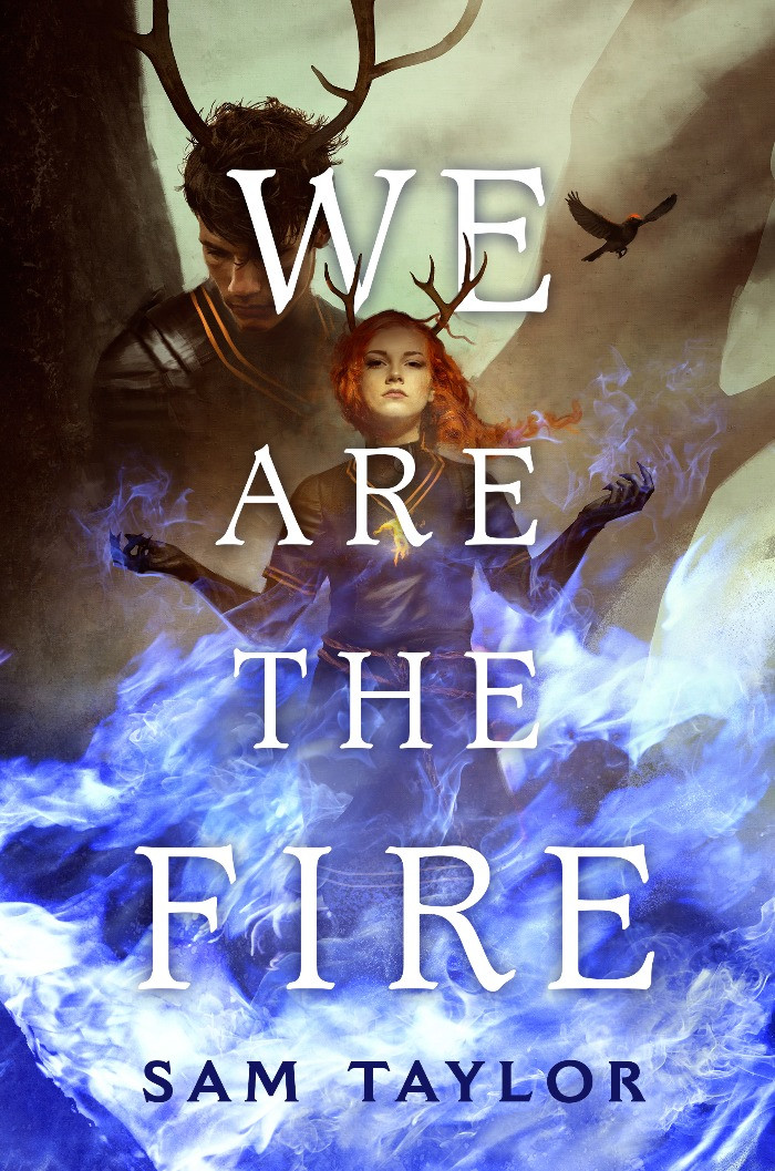 Cover image for We Are the Fire