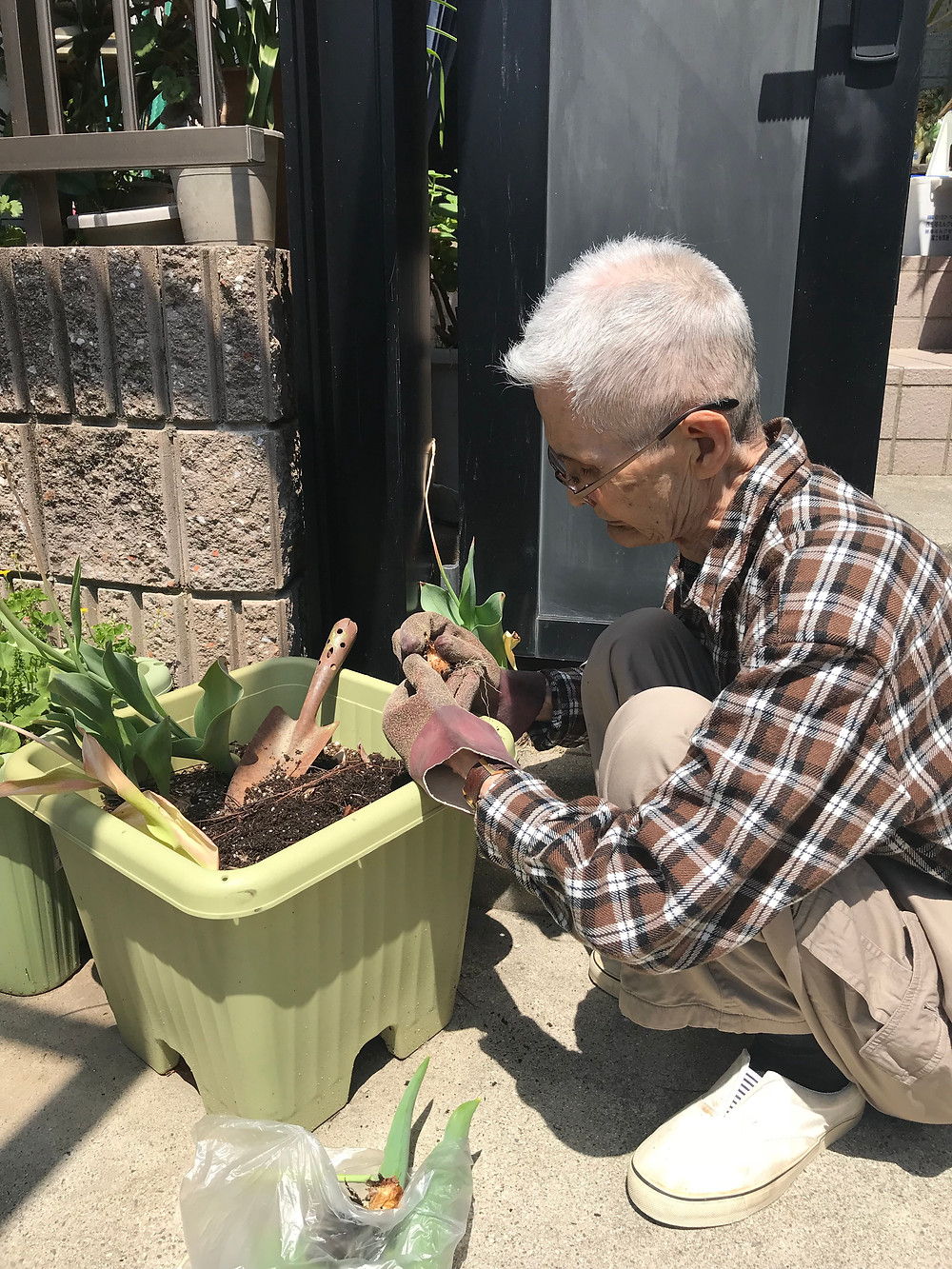 訪問リハビリのリハビリネクスト 園芸療法2018