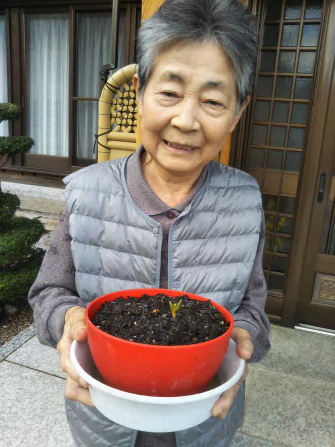冬の園芸療法2019年度 元気に育つように⑥