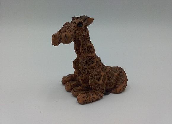 Giraffe little