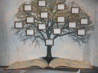 Você já pensou em fazer o livro de sua família?
