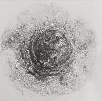 Areola Sketch Manderville Aesthetics4.jp