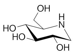 Iminosugars: Highly Functional But Elusive Natural Ingredients