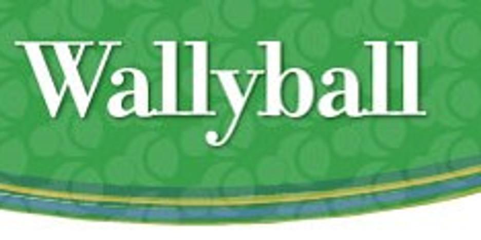 Youth Wallyball