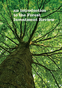 an-introduction-to-the-forest-investment