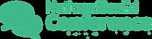 nsec logo.png