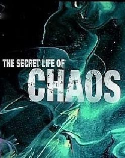 CONSCIOUSNESS AND CHAOS